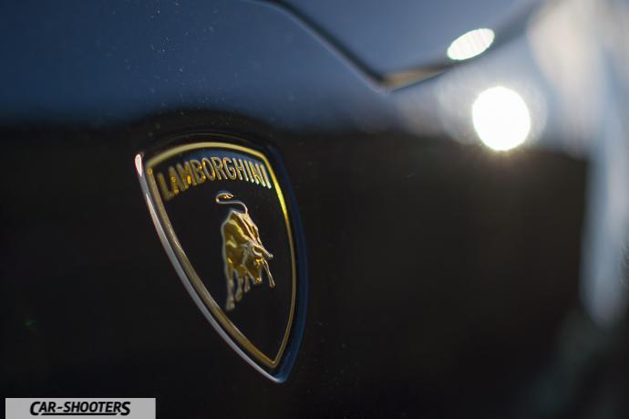 Dettaglio Logo Lamborghini
