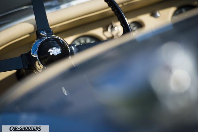 Jaguar XK120 dettaglio logo volante