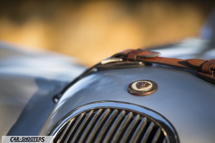 cinghia cofano Jaguar XK120