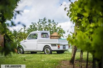 Fiat 500 Camioncino posteriore in vigna